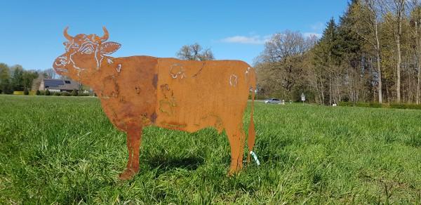 Kuh Rosalinda groß