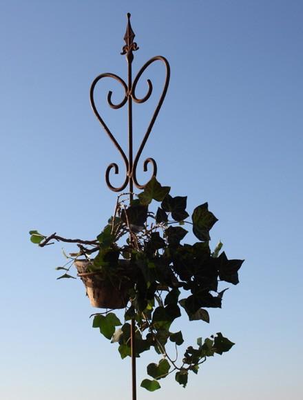 Rosenstab/ Pflanzenstab