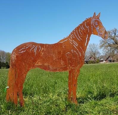 Pferd Oldenburger