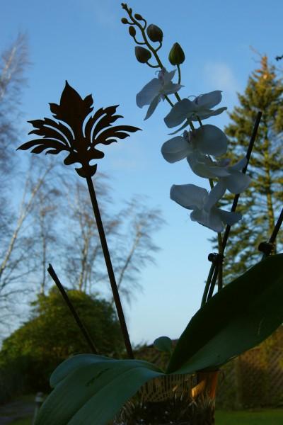 Blumentopfstecker Viona klein