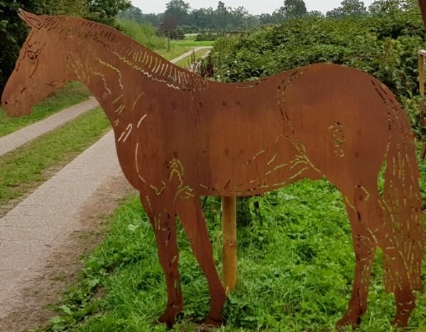Pony Bubi