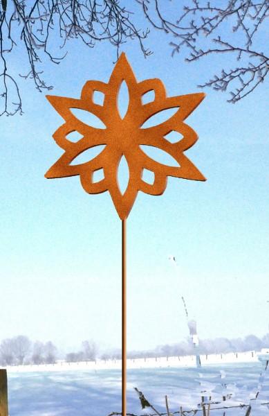 Blumentopfstecker Stern